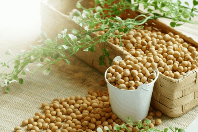 Hàm lượng dinh dưỡng trong đậu nành mang đến lợi ích gì cho sức khỏe? 5 - Deli Beans