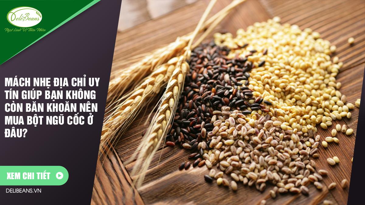 Mách nhẹ địa chỉ uy tín giúp bạn không còn băn khoăn nên mua bột ngũ cốc ở đâu?