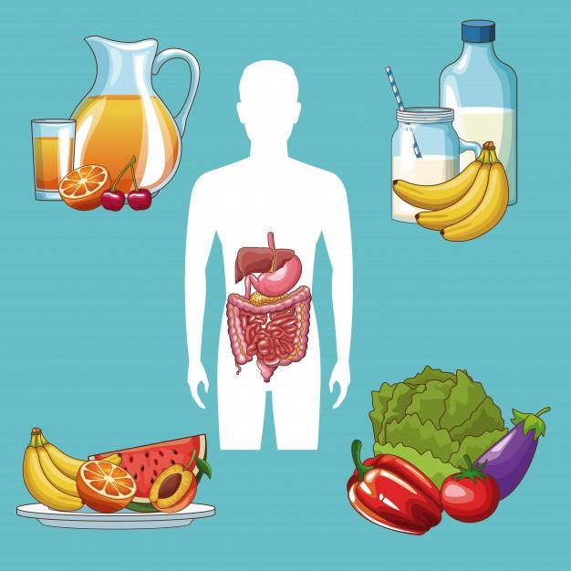 Để có hệ tiêu hóa tốt nên ăn uống như thế nào?